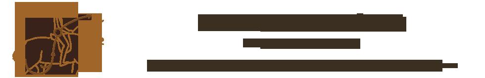 RiderPilates®   Pilates for Equestrians   Redmond, WA Logo
